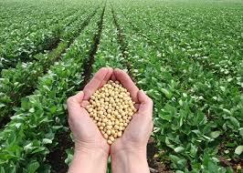 Gnojiva za poljoprivredu